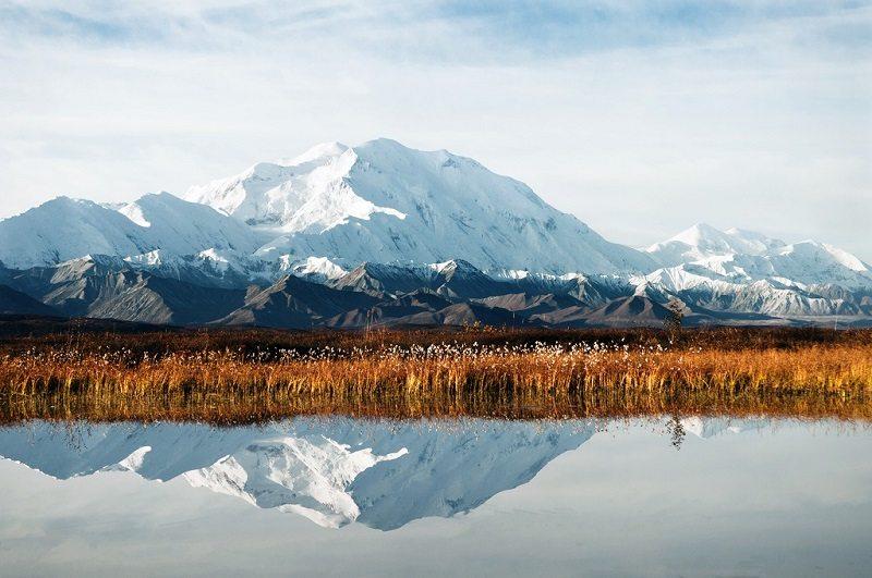 Parque Nacional Denali Preserve (Alaska)