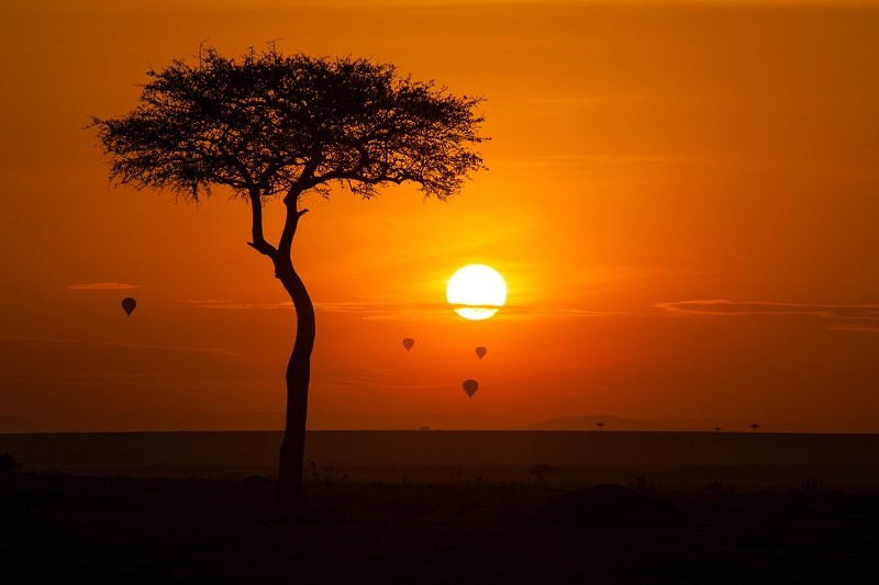 Masai Mara (Kenia)