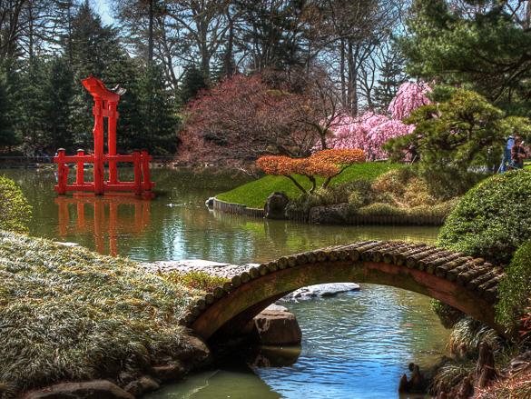 Visitar el Jardín Botánico de Brooklyn