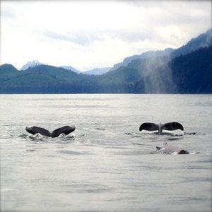 Alaska, América del Norte